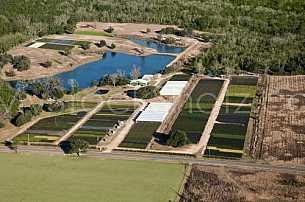 Commercial Nursery in Mobile, Alabama - aerial