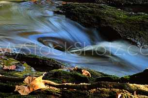 Water at moccasin gap - Alabama 2
