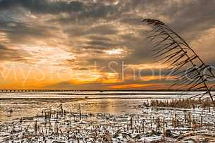 Frozen Mobile Bay