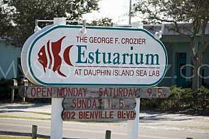 Estuarium Entrance