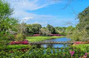 Bellingrath Gardens and Mirror Lake