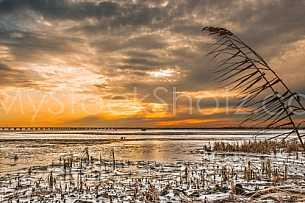Frozen Mobile Bay