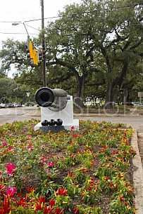 The Canon at the Loop