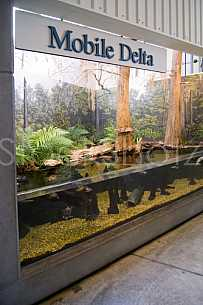 Mobile Delta Exhibit