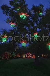 Bellingrath Gardens Christmas in Lights