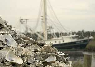 Commercial Oyster Fishing photo - Bayou La Batre, AL
